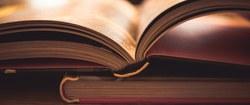 Rejoignez les Biblivores à la bibliothèque