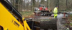 Une scierie mobile pour valoriser le bois de la Ville !