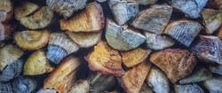 Vente de coupes de bois - Le 1er octobre 2018