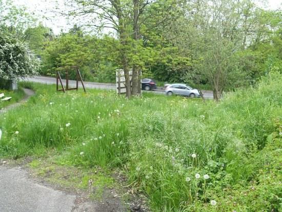 12mai2012 - parc Chée Waremme1.JPG