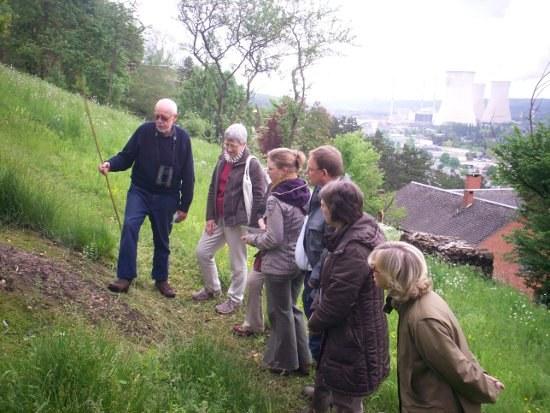 12mai2012 - pelouse Meuse.jpg